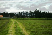 Business Opportunity - Land Development or Your Farm Close to Cotacachi
