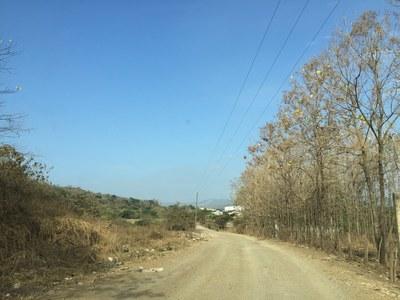 entrada camino (1).JPG