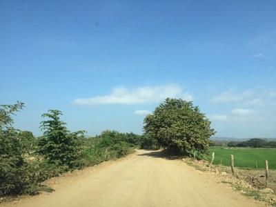 entrada camino (2).JPG