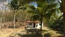 arroz teca hacienda casa de campo montaña rural inversion