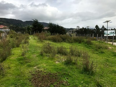 770m2 lot for sale in loja