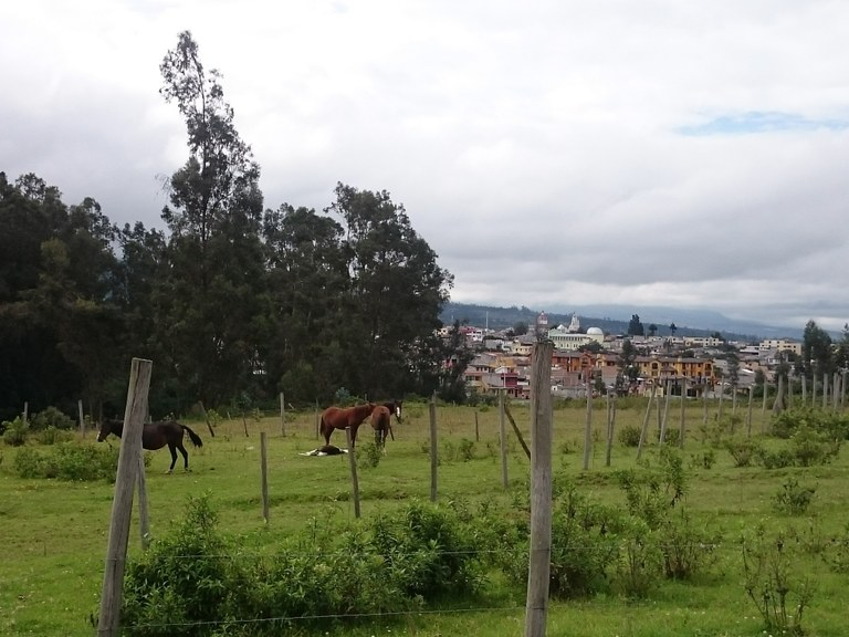 Lot #6 Rosario del Campo: Mountain and Countryside Home Construction Site For Sale in Cotacachi