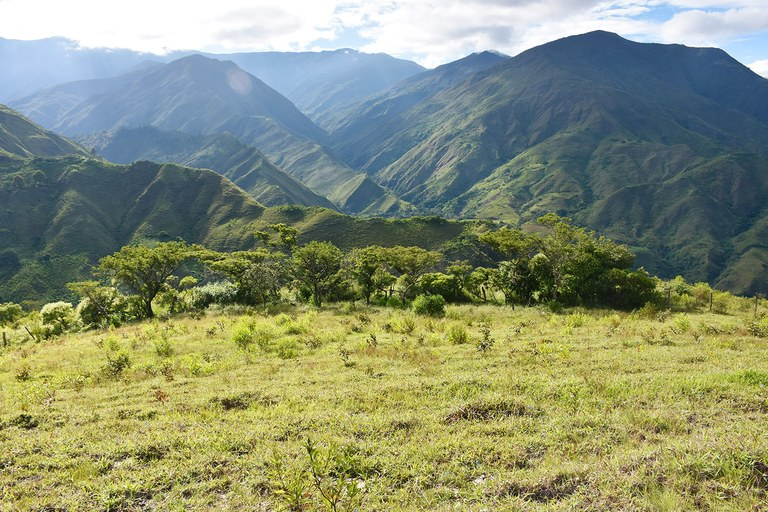Se Vende Granja en Zona Rural y en la Montaña en Vilcabamba