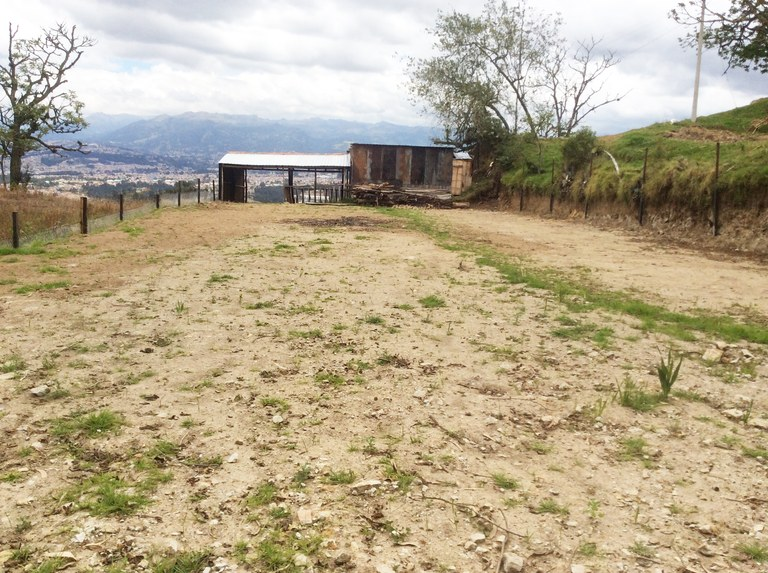 Countryside home construction site for sale in cuenca welcome to ecuador english - Countryside homes parents welcoming ...