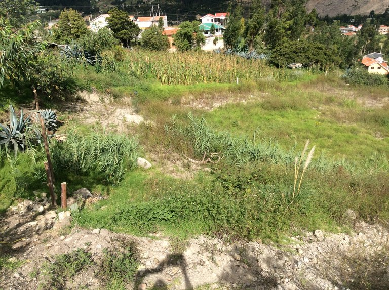 Countryside home construction site for sale in capulispamba cuenca welcome to ecuador english - Countryside homes parents welcoming ...