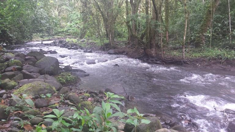 Mountainside 8 hectare Getaway Propery in Pukara