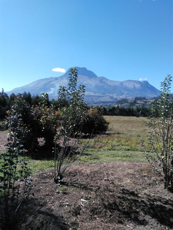 Mountain Development Parcel For Sale in Cotacachi