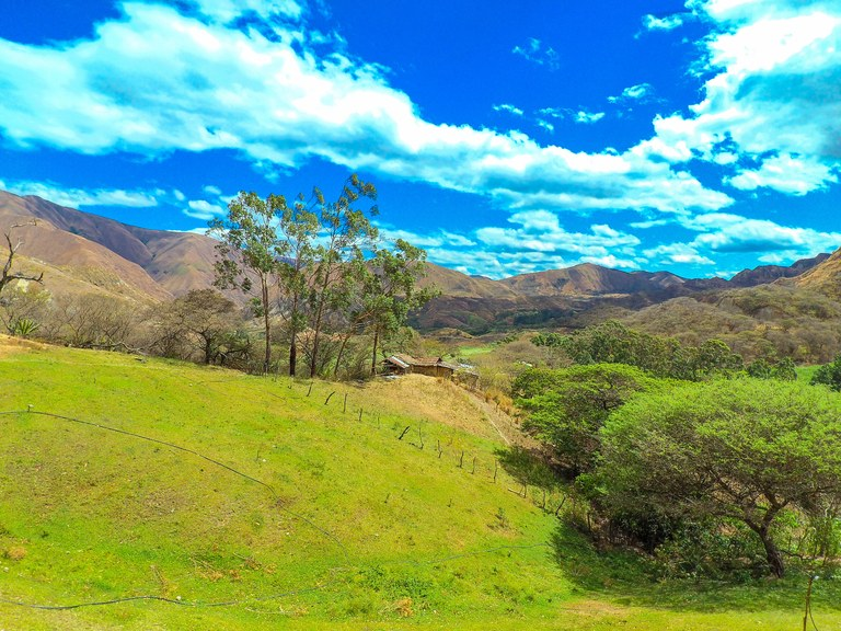 Mountain and Countryside Development Parcel For Sale in Vilcabamba
