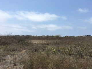 Lot For Sale In Exclusive Punta Blanca Area