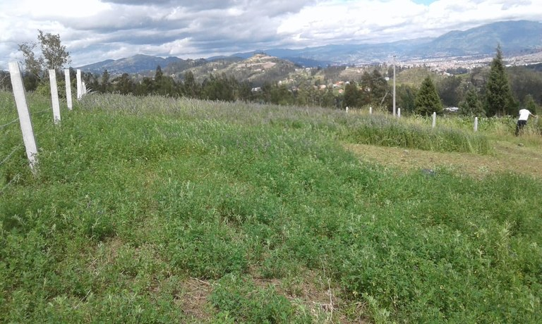 Terreno de 2.595m en Venta: Countryside Home Construction Site For Sale in Nulti