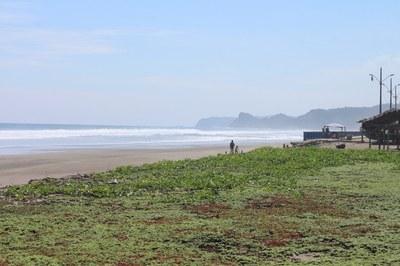 Las Tunas Ocean Front (20).jpg