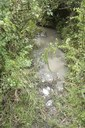 Seasonal Water