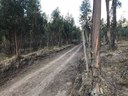 Last 100 Meters unpaved road