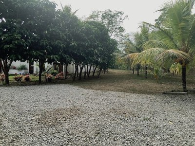 16 Drive to back portion of Finca.jpg