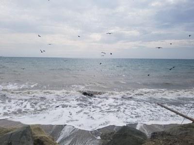 Crucita beach - playa de Crucita