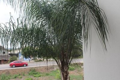 Playa Blanca (11).JPG