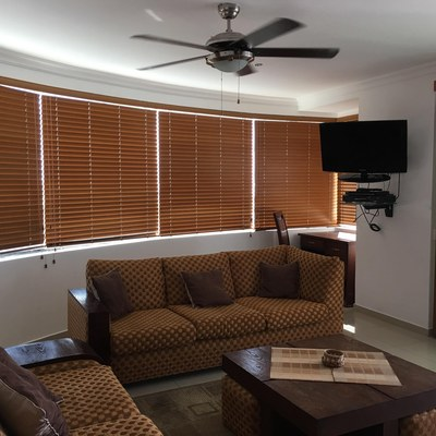 living room with custom blinds.jpg
