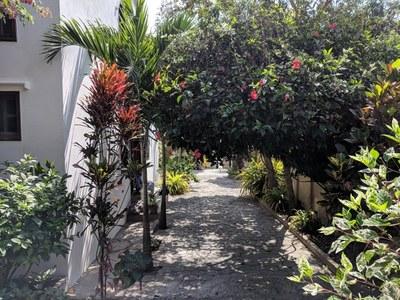 San Vicente Real Estate (45).jpg