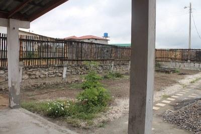 Ginger-Las Brisas-Bamboo Fence (17).jpg