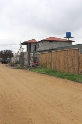 Ginger-Las Brisas-Bamboo Fence (2).jpg