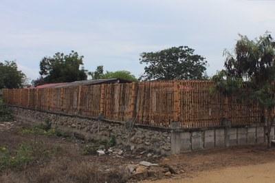 Ginger-Las Brisas-Bamboo Fence (1).jpg
