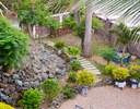 Mature gardens.